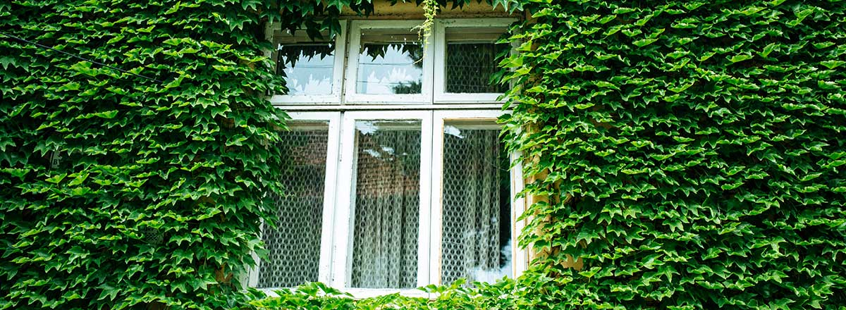 Hipotecas verdes. Paga menos por una casa sostenible